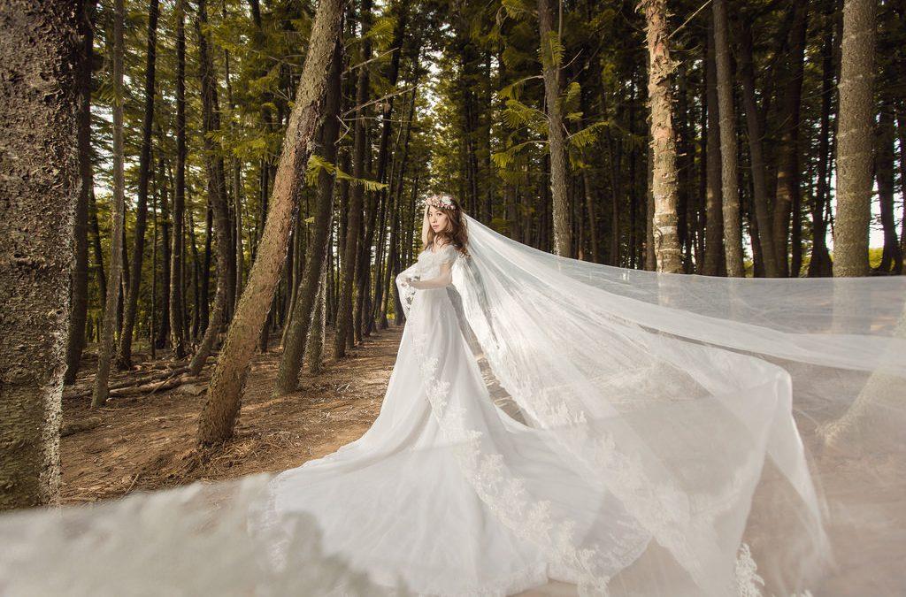 台中婚紗 | 九天森林 | 自助婚紗